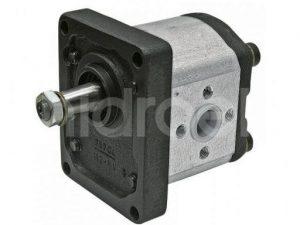 1PN119CB11/466 Hidrolik Pompa